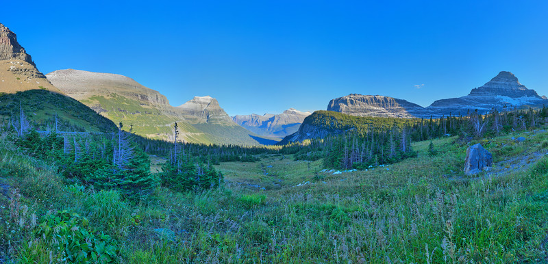 Logan Pass Vista