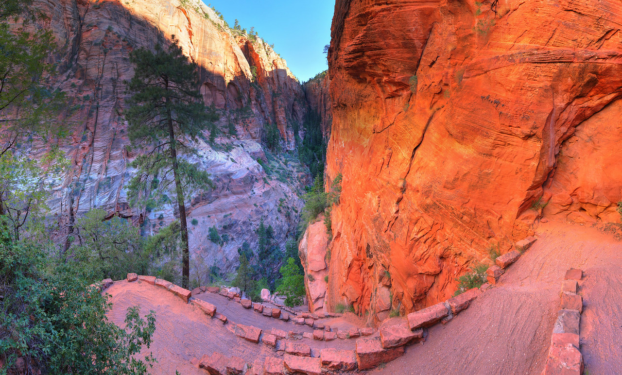 Walter's Wiggles, Zion