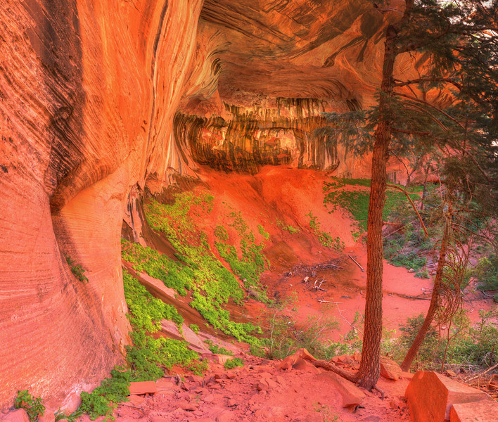 Double Arch Alcove #4, Kolob Canyons