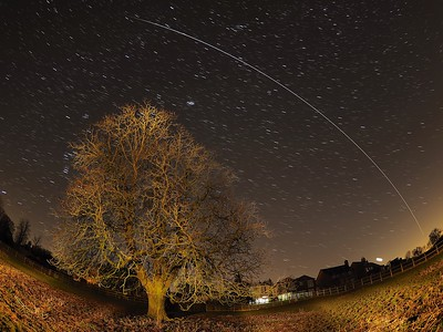 International Space Station flies over tree