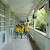 Children passing dozens of occupied bat houses between classes at the Sheng-zheng Elementary School in Taiwan. The school yard is a sanctuary for golden bats, and more than 100 bat houses are occupied by Japenese pipistrelles and Lesser Asian yellow bats. Over the past decade roughly 1,000 students have closely observed and learned about bats daily, and not a single child has been harmed or contracted a disease.