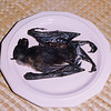 Bat soup, a Chamorro delicacy, on Guam.<br /> Pteropus tokudaeused to be the choice species for this dish, but it's gone extinct from over hunting. The Pteropus mariannus, pictured here in1986, is now endangered. At the time of this photo there were less than 200 Pteropus mariannus bats alive on Guam. There's so few of these bats left on Guam they can no longer serve the ecosystem by dispersing seeds and pollinating. It's also becoming more and more difficult to grow fruit locally due to over abundance of fruit flies, which previously would have been controlled by flying foxes who eat overripe fruit, keeping it from sitting on the tree as food and breeding grounds for fruit flies.