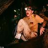 frog-eating or fringe-lipped bat, Trachops cirrhosus