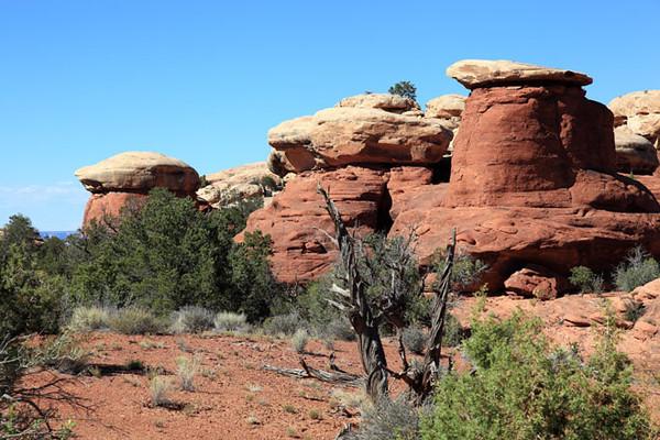 Needles - Canyonlands National Park