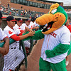 The Lowell Spinners opening day was on Monday afternoon, June 19, 2017, at LeLacheur Park. The Canaligator had some fun high fiving the team just before the game. SUN/JOHN LOVE