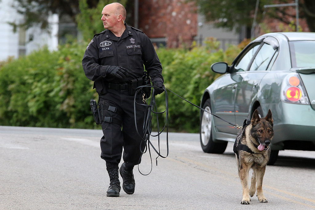 . State Trooper and his K-9 hel in the search for Ross Elliott of Lowell who was a suspect in the killing of a women early Thursday morning. SUN/JOHN LOVE