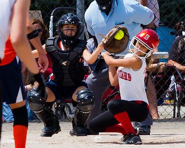 Lowell Backyard Dreams Baseball ans Softball
