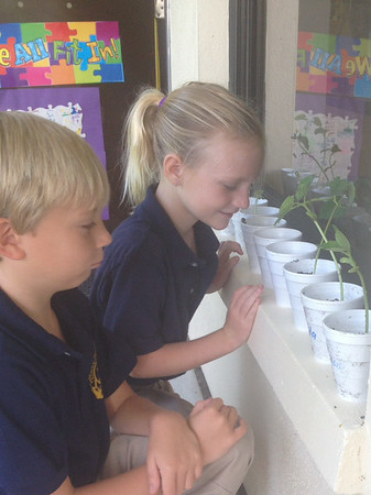 Science with Seeds