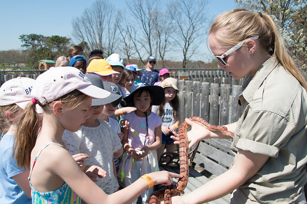 Grade 2 Visits Great Adventure Safari Park