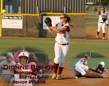Lowndes Softball Collages