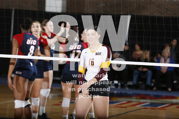 11.14.2014 - Loyola Volleyball at UIC