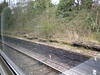 "After Crossing across off the WCML and as you head for Lowton Jct <br /> <br /> at the top of the Traingle there are the Remains of an old station with <br /> <br /> the Platforms still in tact:<br /> <br /> Location: <br /> <br /> Between Golbourne Jct & Lowton Jct<br /> <br /> Remains of the Wigan Bound Platform of what once was Lowton <br /> <br /> Station more info on the History of Lowton station can be found here <br /> <br /> <br /> <a href=""http://www.disused-stations.org.uk/l/lowton/index.shtml"">http://www.disused-stations.org.uk/l/lowton/index.shtml</a>"