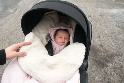 Week 2 (02/01/16) - We go on our first stroller ride :)