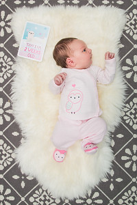 Week 2 (02/03/16) - Lucy is two weeks old!
