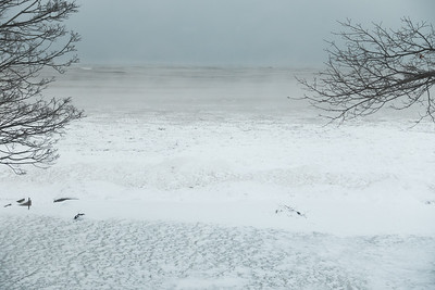 Week 4 02/13/16 - We visit Grandpa Mike's home on Lake Ontario, and the lake is freezing over.