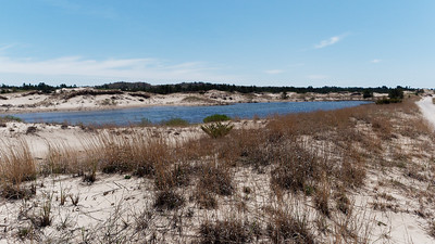 A Pond amongst the Dunes