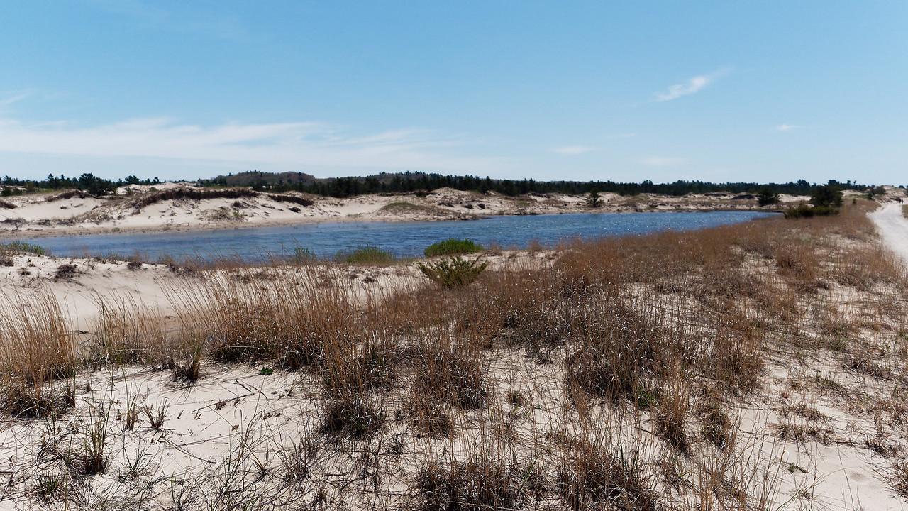 A Pond amongst the Dunes