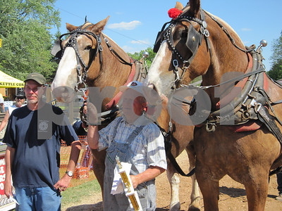 JS - Horse pull 2nd place