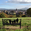Remembrance bench at Whitcliffe Common overlooking the town centre of Ludlow.