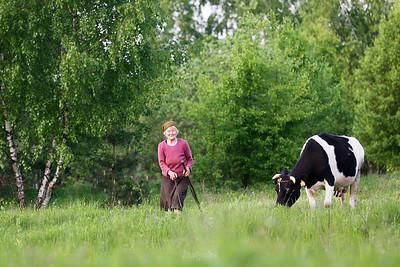Babcinka w dolinie Pisi Gągoliny