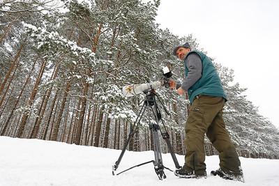 Paolo na zimowisku biebrzańskich łosi
