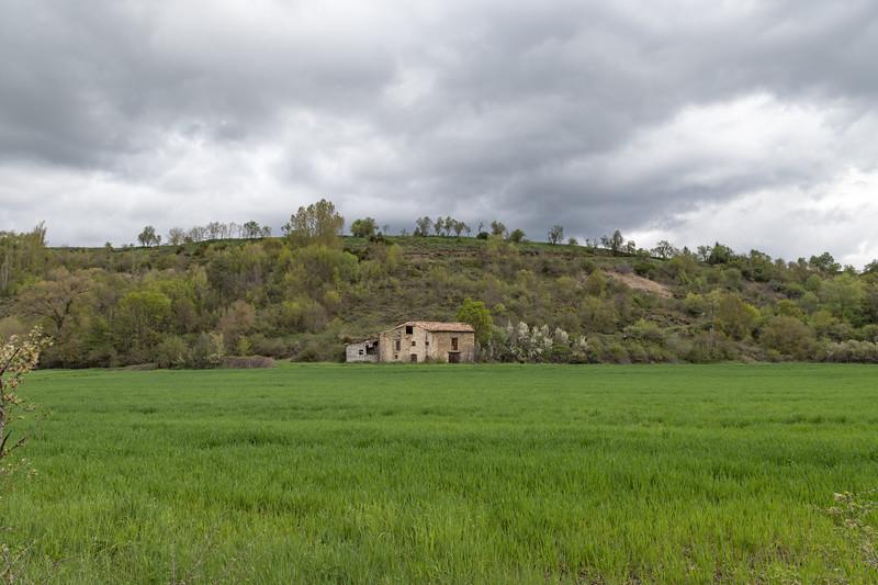 Verdes campos.
