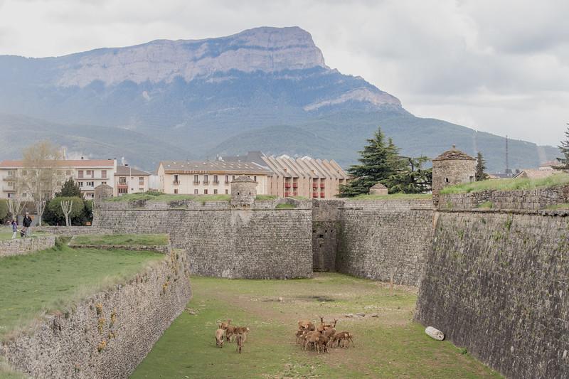 Ciudadela de Jaca y Peña Oroel.