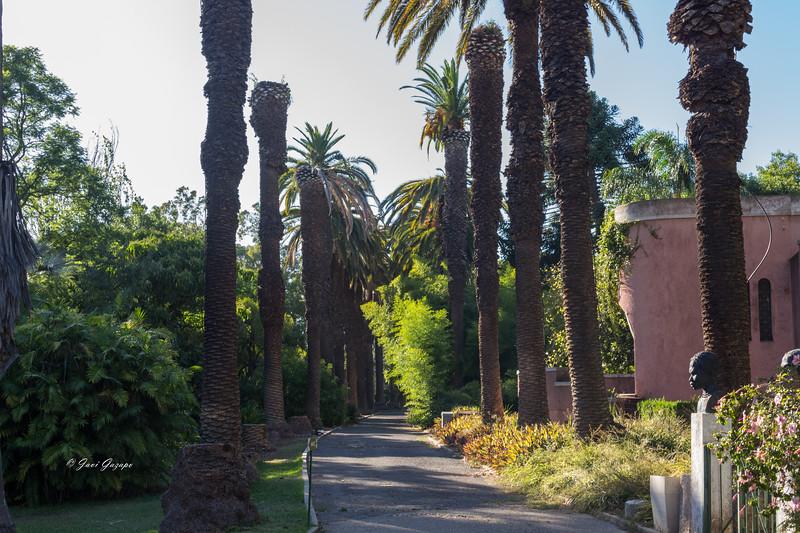 Jardín Botánico Tropical