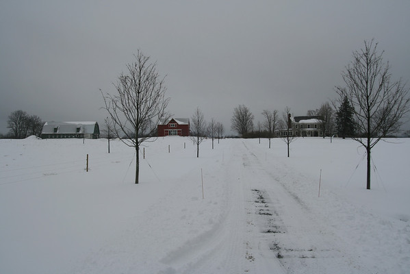 Lukeobel Farm
