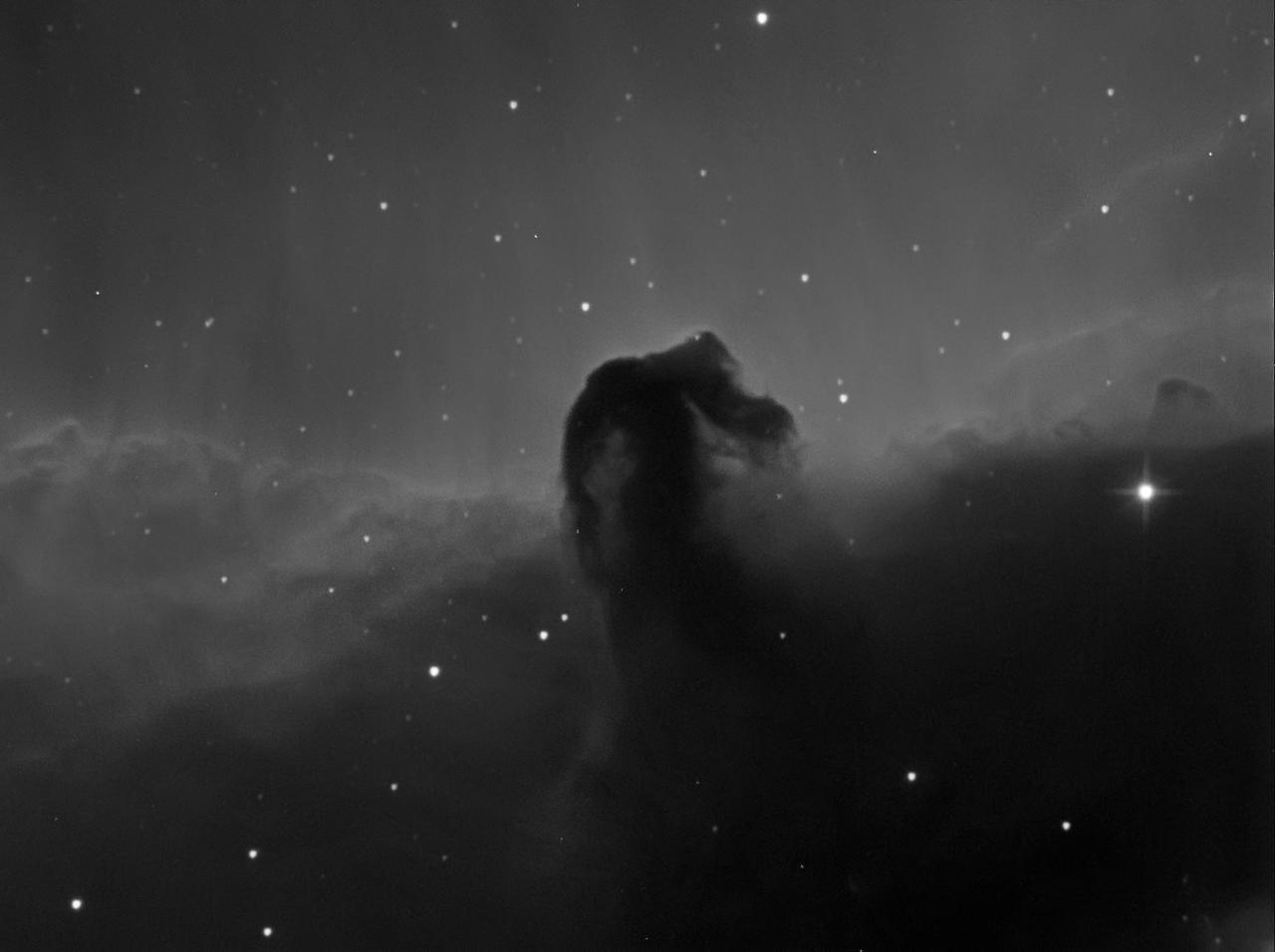 Horsehead Nebula - IC 434