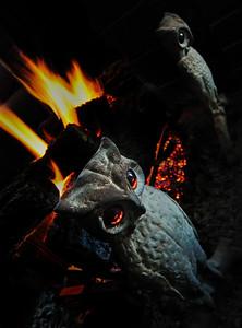 Fire Owls