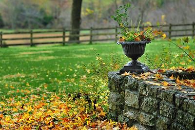 Peaceful October 39, 2009