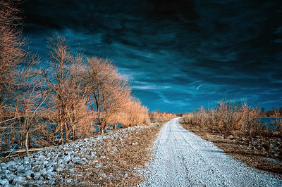 Illinois Levee Road February 6, 2009  Captured with an infrared-converted Nikon D70s.