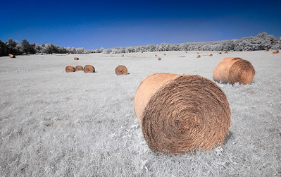 Hay Bales in Mt. Sterling, Missouri