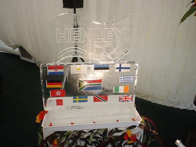 Ice Sculpture (2)