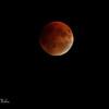 Lune de sang 2015 Blood moon