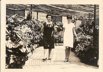 Estufa de Andrada Nanda Ferreira da Silva e mae Regina