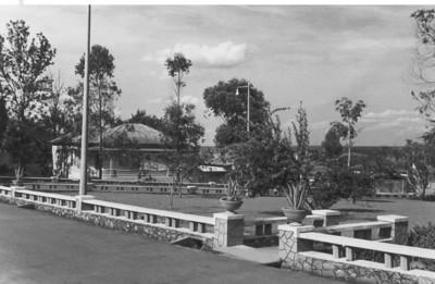 Jardim dos macacos em frente ao Museu