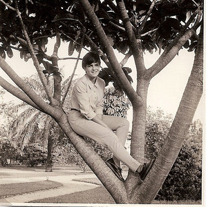 Gininha Almeida Santos, Jardim ao pé da Estufa, 1966