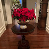 A traditional poinsettia brightens a hallway.