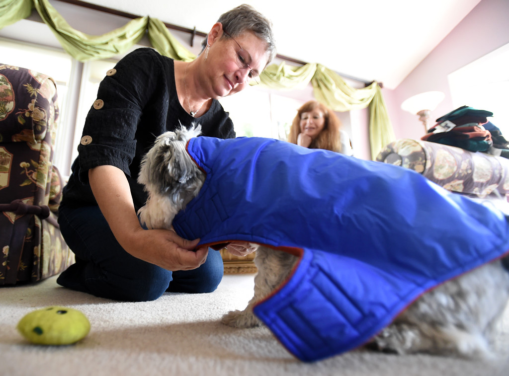 . Julia Johnson, left,  puts  a coat on her dog, Teddy, while Fran Blum watches. Fran Blum, of Boulder, has a business that makes luxury coats for dogs. Cliff Grassmick  Staff Photographer October 13, 2017