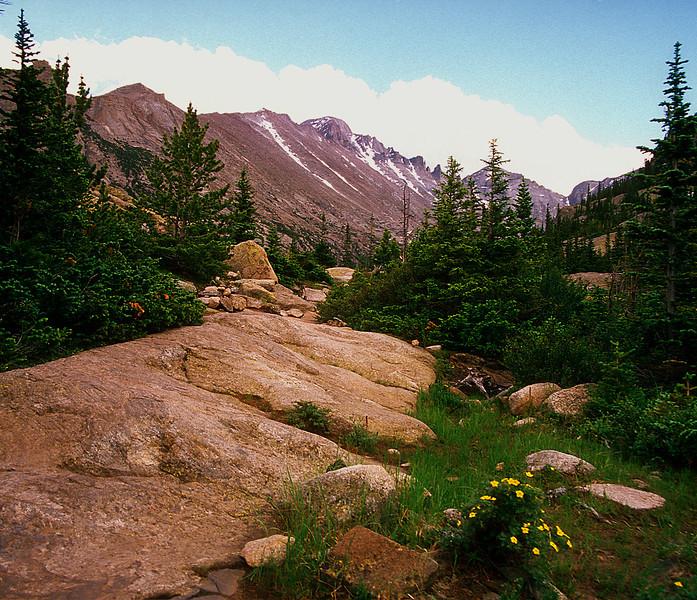 Glacier Basin Trail #005
