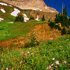Yankee Boy Basin #004