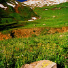 Yankee Boy Basin #003