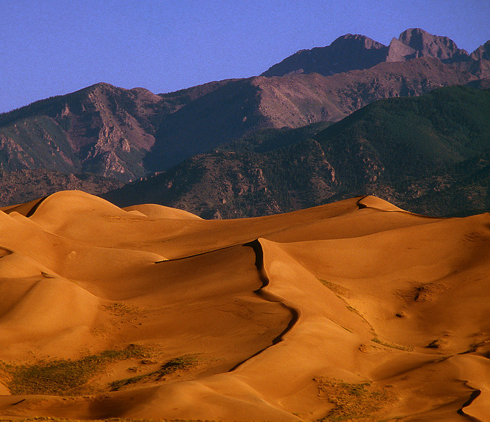 Great Sand Dunes NM #004