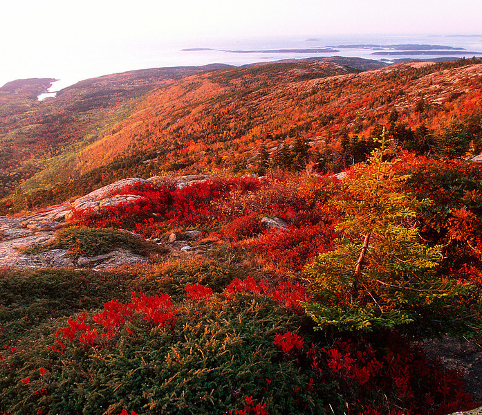 Cadillac Mountain #027