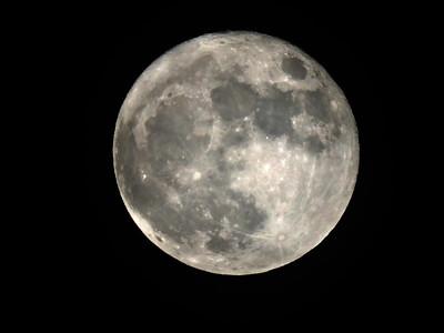 Super Moon (7)