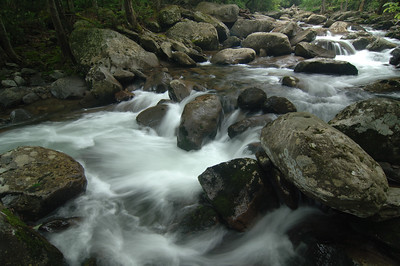 Smoky Mtn  N P  Little Pigeon River-Middle Prong (22)