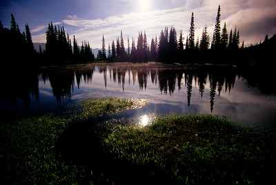 Reflection Lake #013