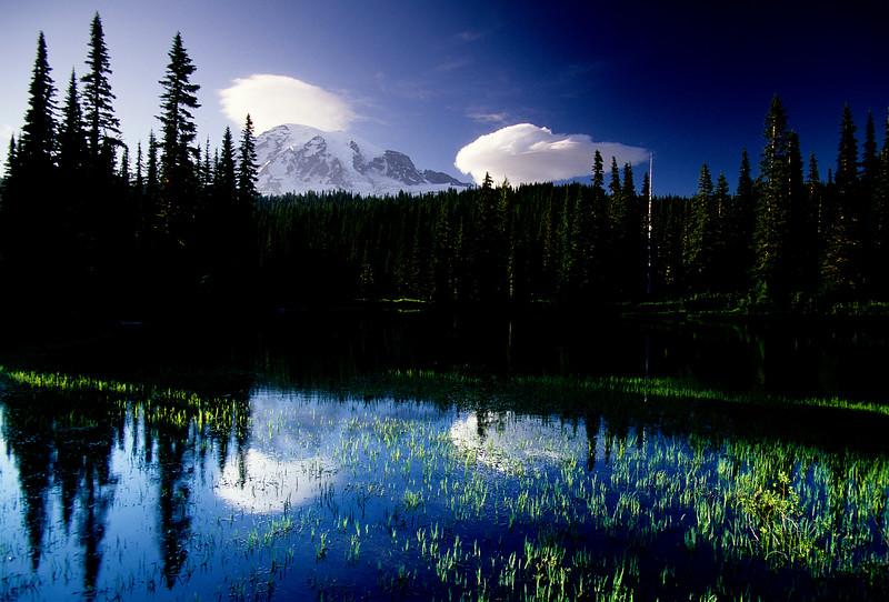 Mt  Rainier (88)
